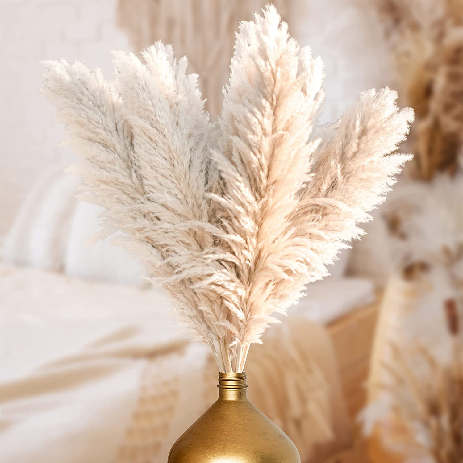 Homexxpress Pampas Grass - Natural Dried, Fluffy Decorative Plant for Bouquet & Home Flower Arrangements - Rustic Boho Decor for Living Room, Bedroom, Wedding Party - 45 Inches Tall, 3-Pack, Off White