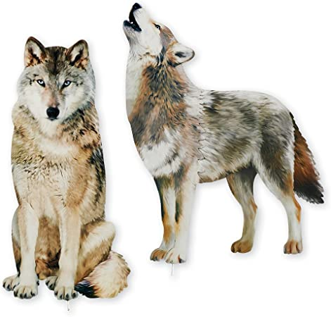 Amazon.com: Collections Etc Wolf - Juego de estacas ...