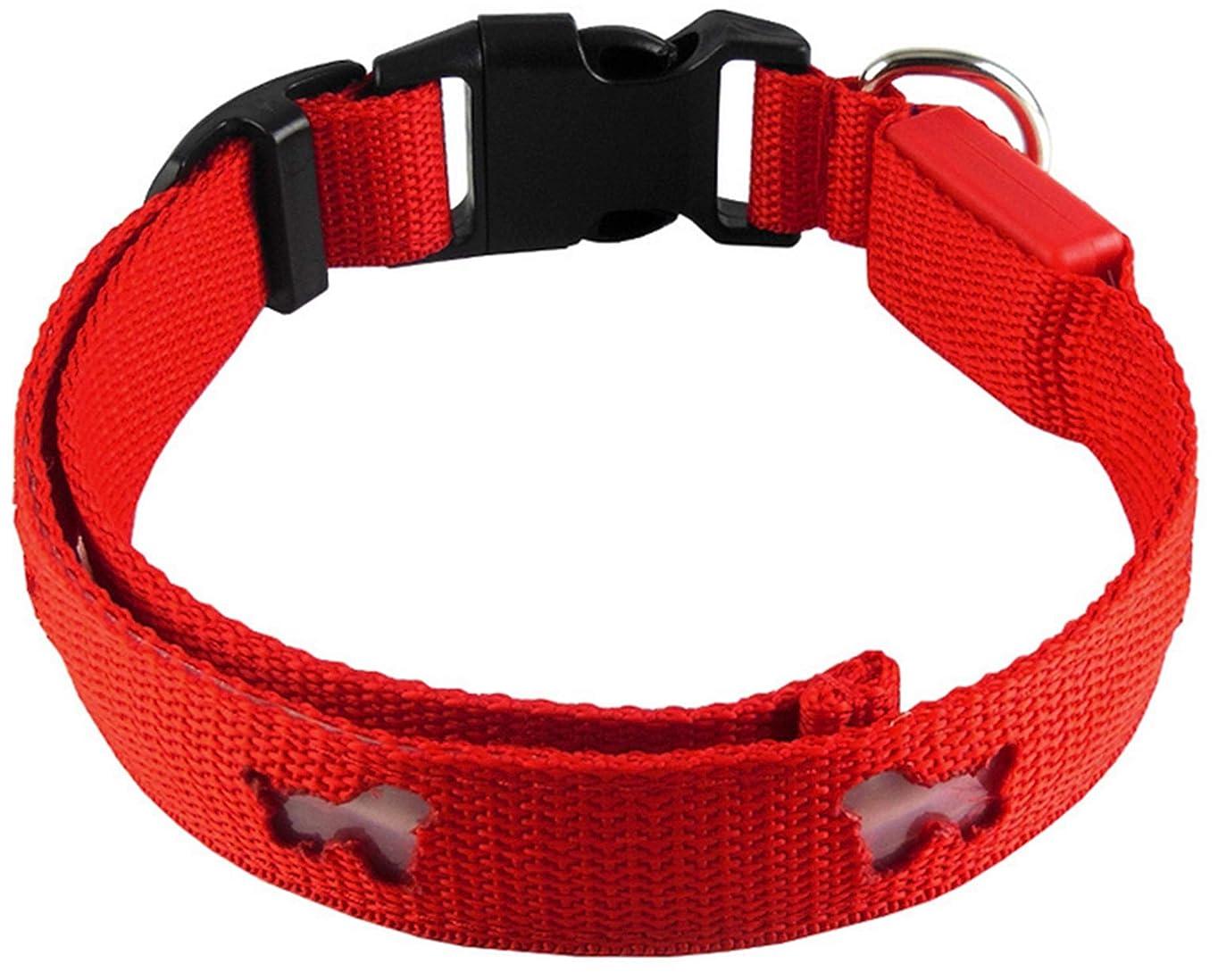 福祉直接ポットLED ペンダント 犬 猫 の 首輪 に 夜の散歩でも ペットの位置を光で知らせます (緑)