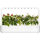 Emsa Click & Grow Smart Garden 9 unidades M52619, Semillas Smart Garden, huerto urbano, tierra inteligente, jardín…