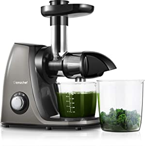Juicer Machines AMZCHEF Slow Masticating Juicer Slow Juicer Extractor Easy to Clean,Quiet Motor,Reverse Function,BPA-Free,Cold Press Juicer for Vegetables and Fruits Hight Juice Yield with Brush