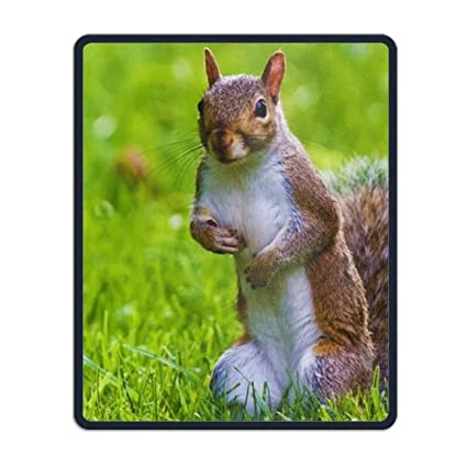 fbee6f7c21c96 Amazon.com : Nature Animals Mouse Pad Non-Slip Mouse Mat for Home ...