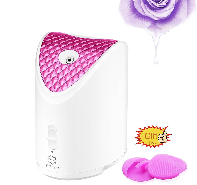 GOODSKY Face Steamer Nano Ionisches Heißdämpfendes Gesichtsdämpfungsgerät und professionelle Hautpflege für Mitesser & Akne & Sinusbehandlung VOUMEY
