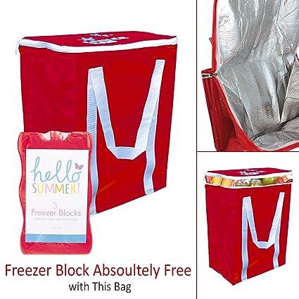 Cooler Bag - Fácil de Limpiar - -Congelador 3 unidades Block ...