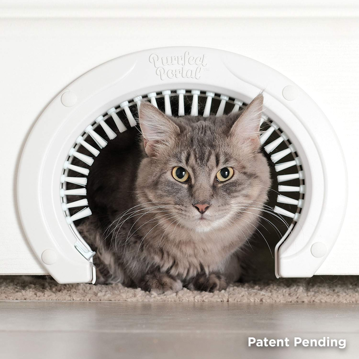 Purrfect Portal Cat Door for Interior Doors with Grooming Brush :: Large Pet Cat Pass for Adult Cats up to 20 Lbs :: Easy to Install Cat Door with Brush w/Detailed Instructions Plus Screws & Screw