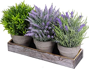Set of 3 Artificial Lavender Flower Grass Greenery Mini Potted Plants Assortment with Wood Planter Box for Farmhouse Kitchen Office Bathroom Table Centerpiece Rustic Country French Indoor Floral Décor