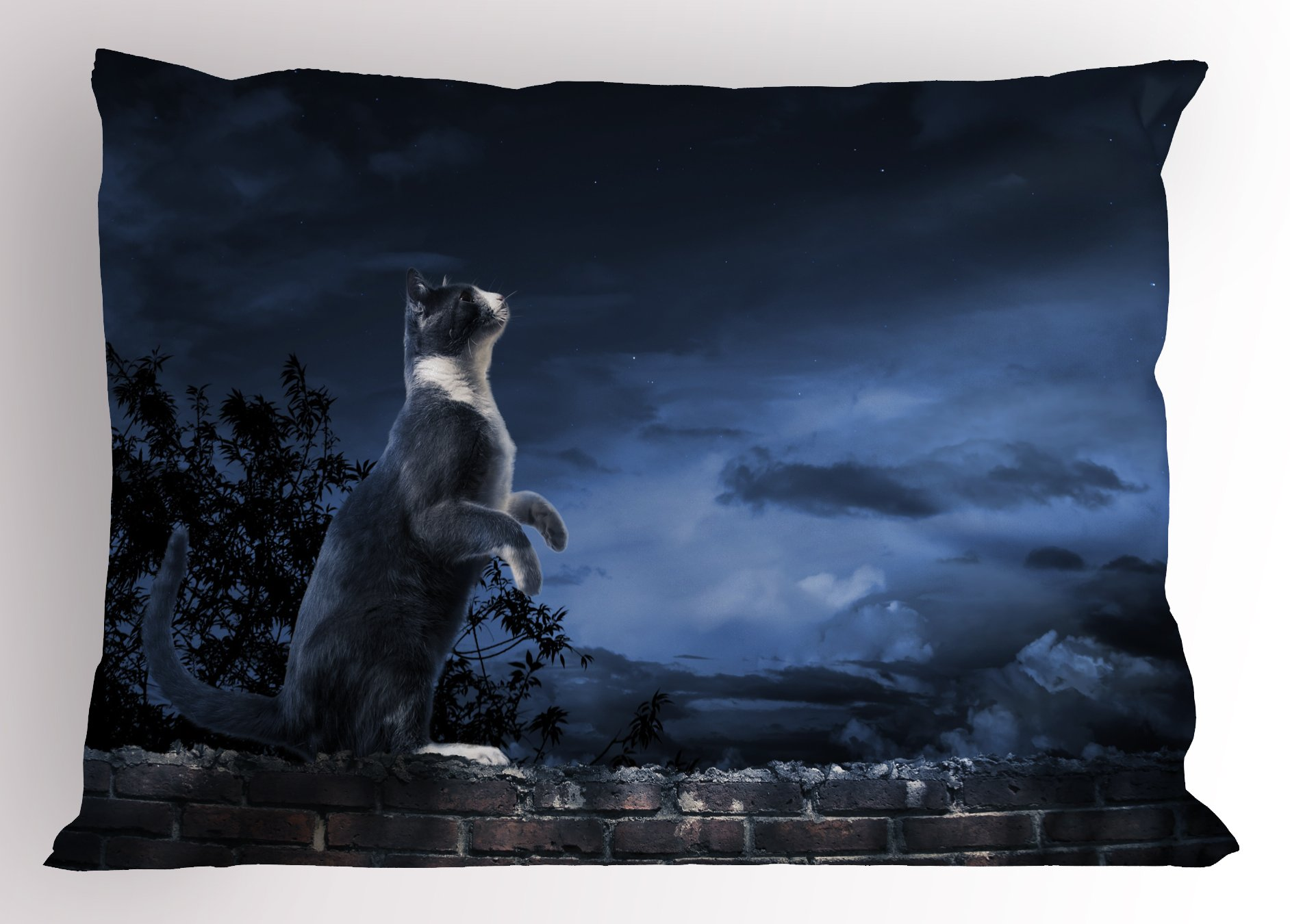Lunarable Cat Pillow Sham, Photo of a Cat Sitting on a Wall Looking at The Sky Mysterious Night Time Trees Clouds, Decorative Standard Queen Size Printed Pillowcase, 30 X 20 inches, Dark Blue