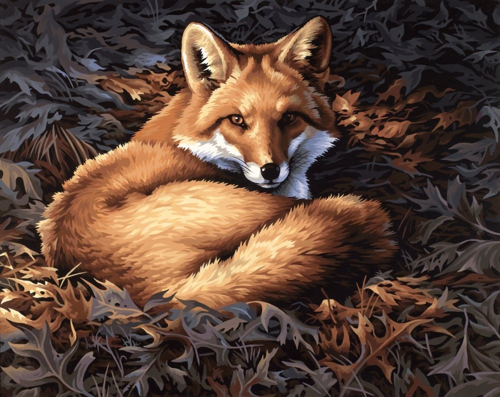 Red color code wolf online - Amazon Com Dimensions Needlecrafts Paintworks Paint By Number Sunlit Fox Arts Crafts Sewing