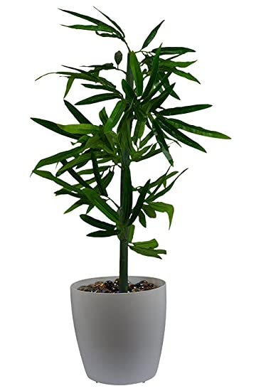 d6fd7e0f8d1e Fancy Mart Artificial Bamboo Tree (Size 1.5 Ft 18 Inchs  45 cms) Without  Pot-1283  Amazon.in  Garden   Outdoors