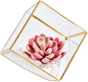 AINOLWAY Home Table Office Decor for Women, Artificial Succulent Plants with Stones in Glass Planter, Kitchen Decorations & Accessories