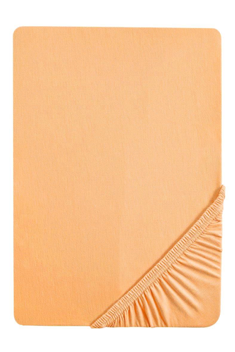 Biberna 77144/555/046, Sábana bajera ajustable elástica, Dorado, 90 x 190 cm - 100 x 200 cm: Amazon.es: Hogar