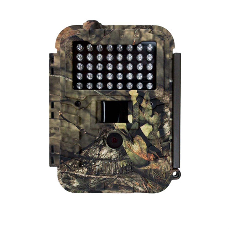 Amazon.com : 1006639 Covert Night Stryker Mo Trail Camera : Sports ...