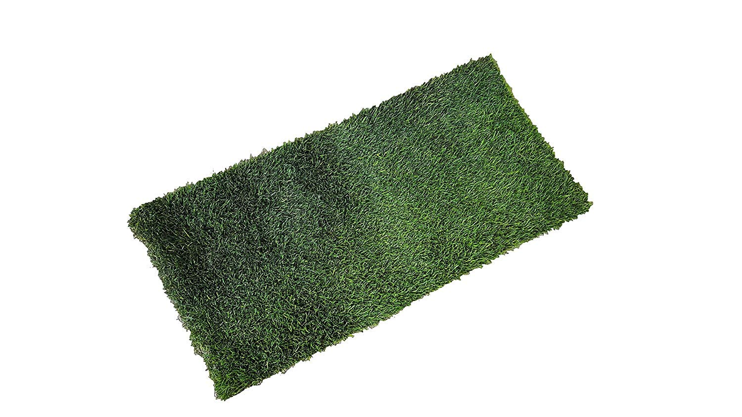 Fresh Patch XL - Real Grass Pee and Potty Training Pad for Large Dogs and Multi-Dog Households - Indoor and Outdoor Use - 48 Inches x 24 Inches by Fresh Patch