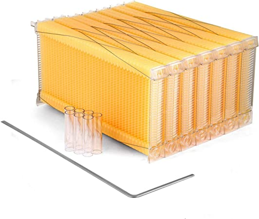 Auto Honey Beehive Frames Beekeeping Kit Bee Hive Auto Harvest Honey NEW