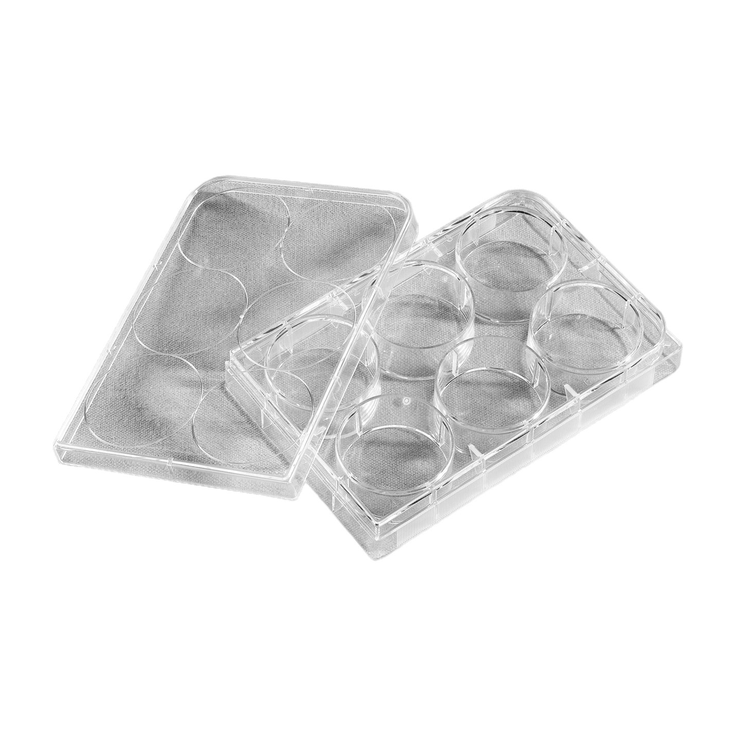 Corning Costar 3516 Polystyrene Sterile Clear Flat Bottom TC-Treated Multiple Well Plate with 6 Wells and Lid, 16.8mL Well Volume, Individually Wrapped (Case of 50)