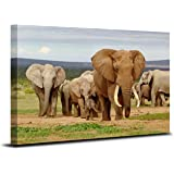 Royllent 1 Panel Framed Wall Decor Art Grassland Elephants Painting The Picture Print On Canvas For Home Decor Decoration Gift piece (Stretched By Wooden Frame,Ready To Hang) RA-CP0003 (C)