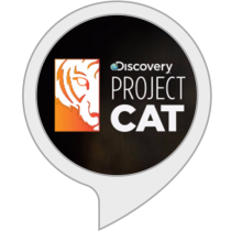 Discovery's Project Cat
