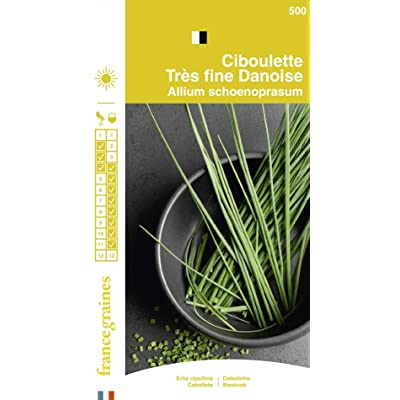 Seed Bag Fine Danish Chives France Graines : Garden & Outdoor