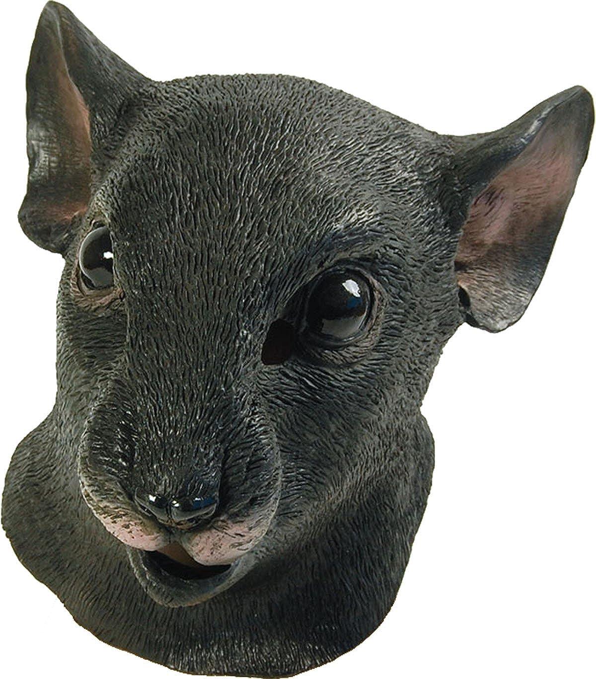 Rubber Rat Full Face mask