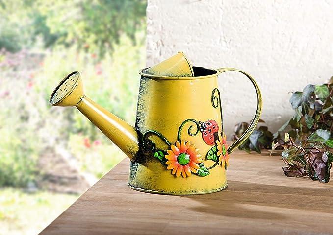 Amazon.com: Charm & Chic - Regadera decorativa de girasol y ...