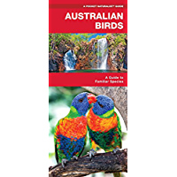 Australian Birds: A Folding Pocket Guide to Familiar Species (A Pocket Naturalist Guide)