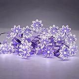 MiniSun - Catena decorativa operata a batteria con 20 luci LED nella forma di margherite - viola (ideale per Natale)