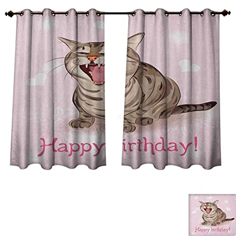 Amazoncom Pricetextile Birthday Blackout Thermal Backed Curtains