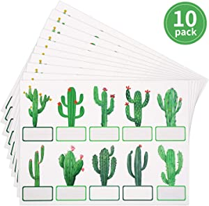 100 Pieces Cactus Cutouts Cactus Name Tags Stickers Cactus Theme Classroom Labels Cactus Bulletin Board Decor Cactus Desk Tags for Office and School