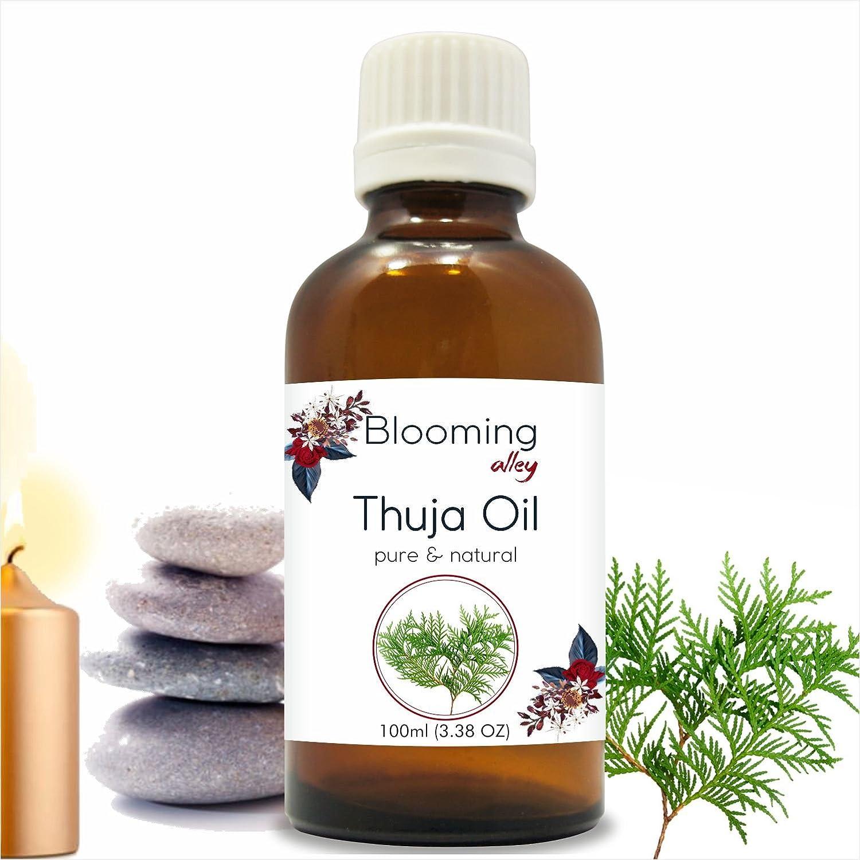 ふるさと納税 Thuja B07F14SSF8 100ML Oil(Thuja Orientali) Essential Oil 100 ml or 3.38 Alley Fl Oz by Blooming Alley 100ML B07F14SSF8, アイアン工房:c85a5816 --- a0267596.xsph.ru