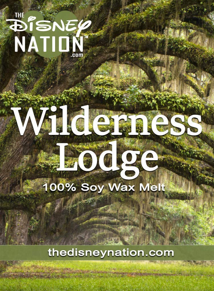 Bourbon 8 oz 100/% Soy Wax Candles Wilderness Lodge Rustic Majesty with the Untamed Mahogany Teakwood Cognac Scent