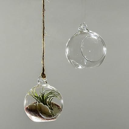 Amazon Com 4 Dia Hanging Glass Ball Globe Plant Terrarium Candle