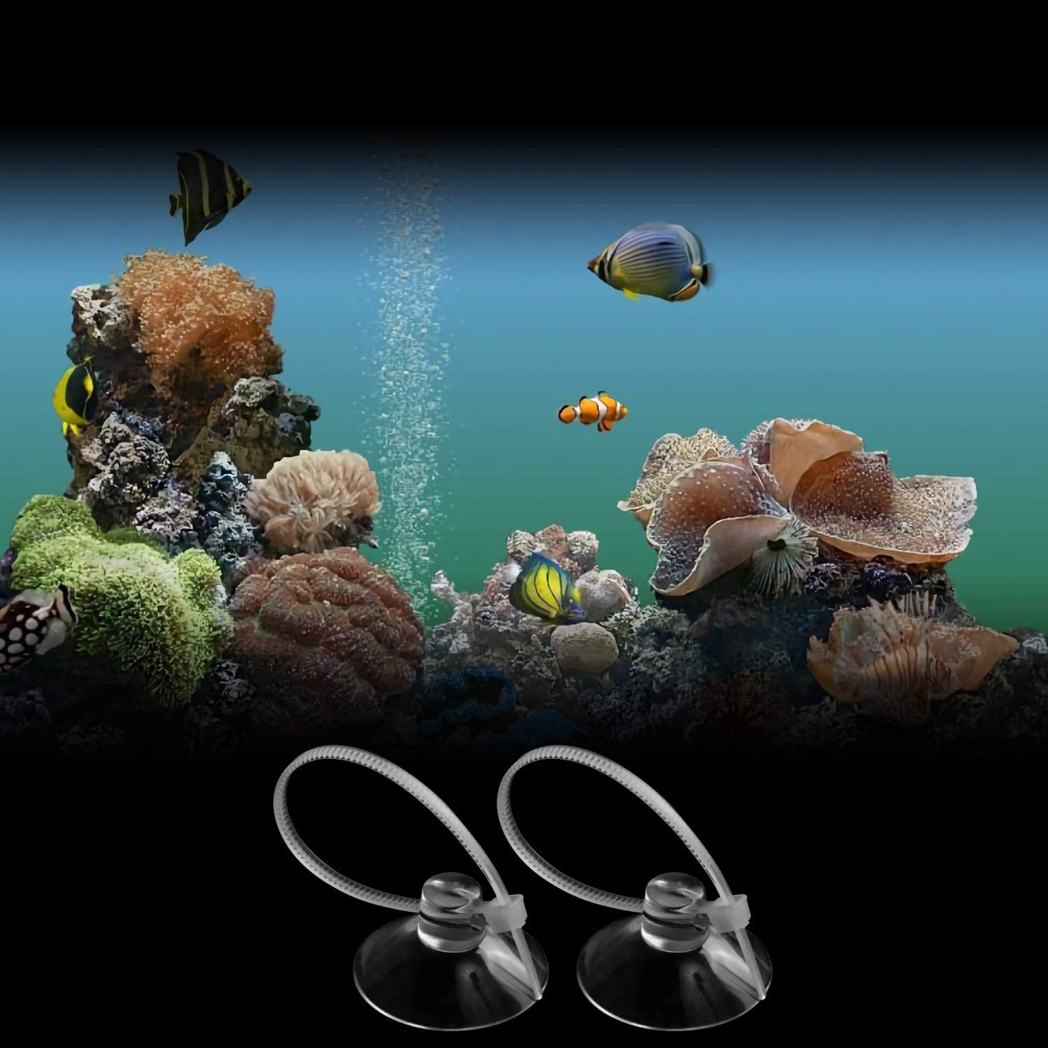 Binding Moss Shrimp Nest FEBSNOW Aquarium Suction Cups 20 Pcs Fish Tank Suction Cups Aquarium Suction Cup Clip Suction Hooks with Adjustable Cable Ties for Plants Planter