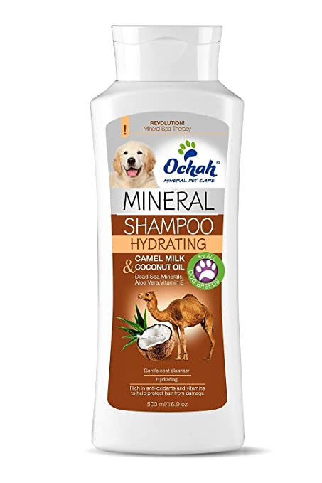 Amazon.com : Ochah All-Natural Mineral Salt Pet Shampoo- FOR PUPPIES with Dead Sea Minerals & Aloe Vera- Soothe, Moisture and Maintain Puppys Sensitive ...