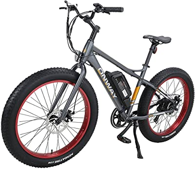 Onway Fat Tire Electric Bicycle