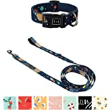 Bad Dog Club Nylon Dog Leash /& Collar Set Adjustable Collar 13 in to 18 in wide Tella /& Stella Safe /& Heavy Duty Rotating Carabiner Clip Lined with Neoprene D Ring for Hooking Accessories Bad Dog Club 5 ft long /¾ in Wide Leash