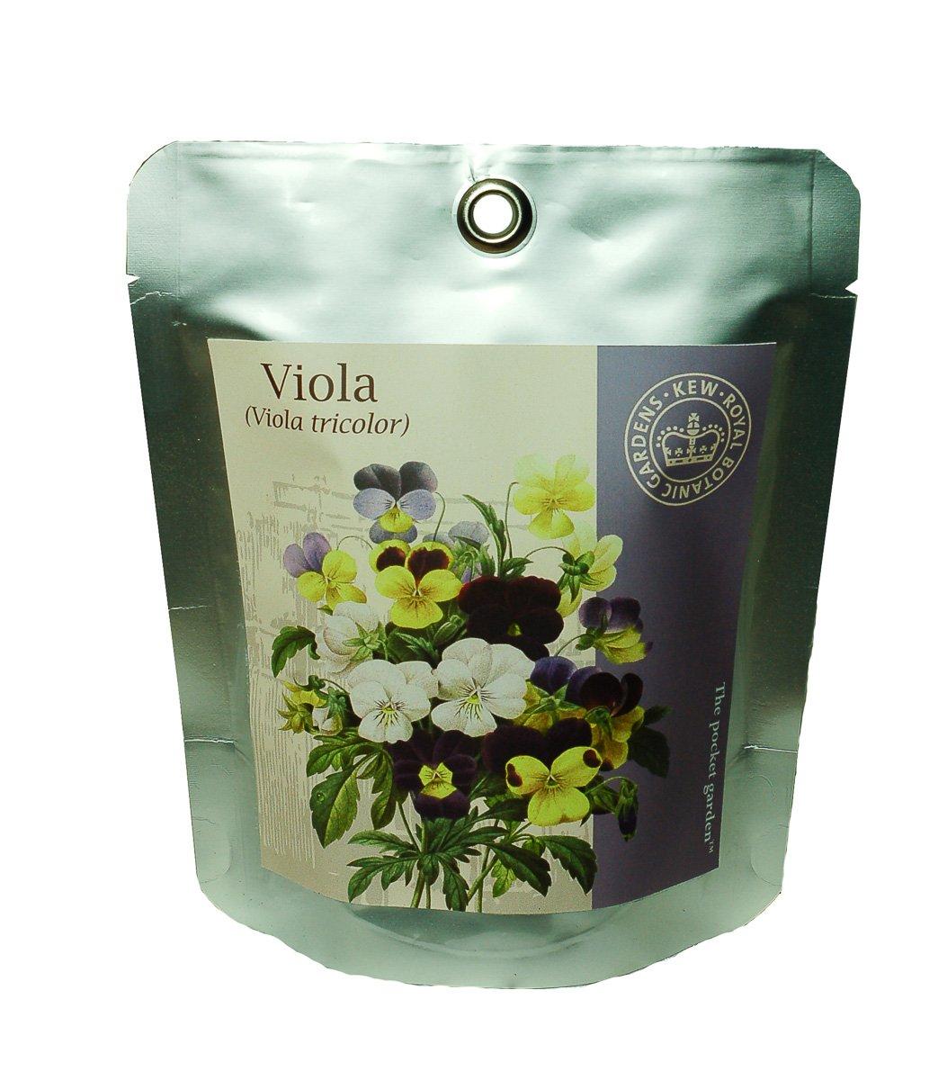 Kew Grow Viola Pocket Gardens Kit Canova Garden KPG9518