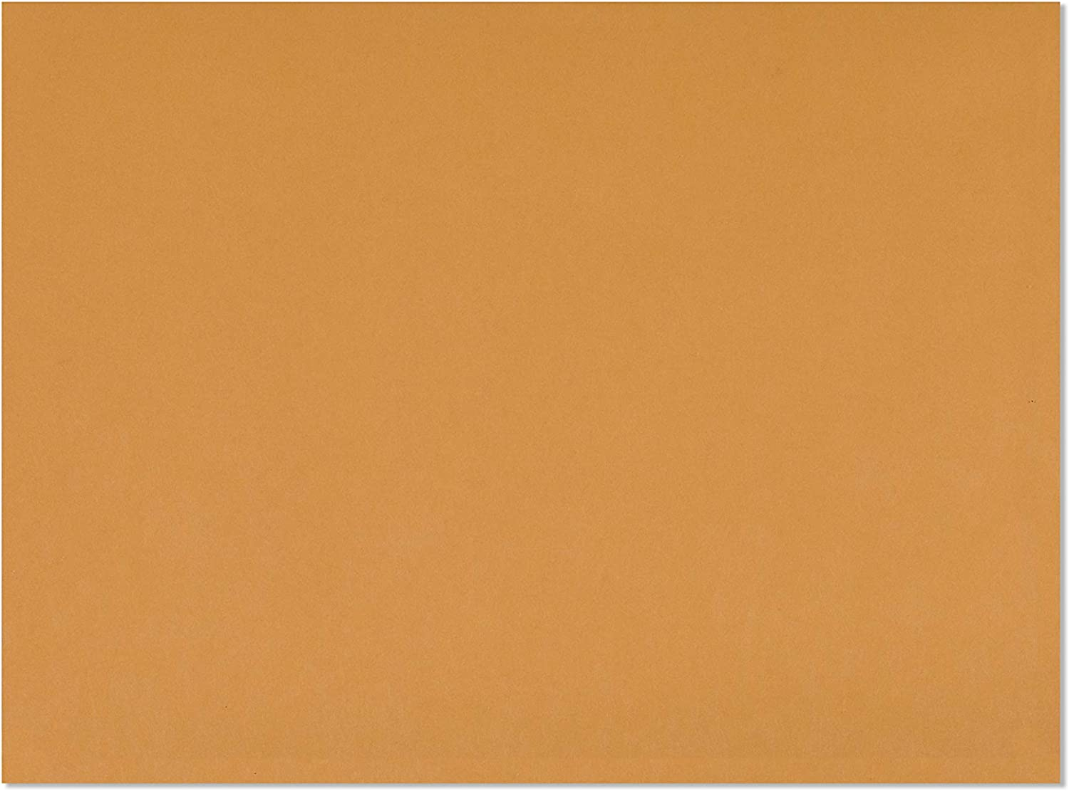Check O Matic 9x12 Brown Booklet Open Side Envelopes – Gummed Seal 9 x 12 Inches Mailing Envelope, For Home, Office, Business, Legal or School - 100 Pack : Office Products