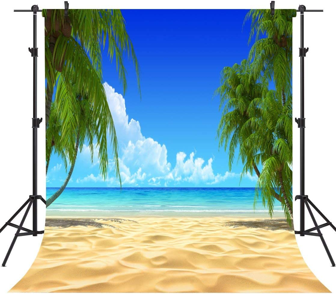 GoHeBe 10X10FT Beautiful Holiday Beaches Seamless Vinyl Photography Backdrop Photo Background Studio Prop TO15