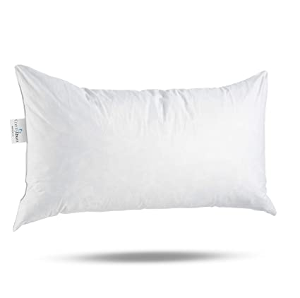 16x26 Pillow Insert Beauteous Amazon ComfyDown 60% Feather 60% Down 60 X 60 Rectangle