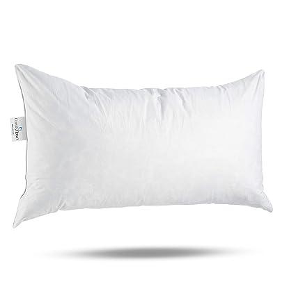 Amazon ComfyDown 40% Feather 40% Down 40 X 40 Rectangle Delectable 30 X 30 Decorative Pillows