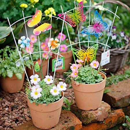 Amazon Com Sungmor 6pcs Iron Garden Fence Shape On Sticks