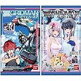 SSSS.GRIDMAN カードウエハース2 (20個入) 食玩・ウエハース (SSSS.GRIDMAN)