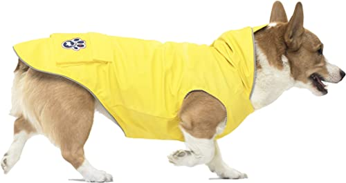 Canada Pooch Yellow Torrential Tracker