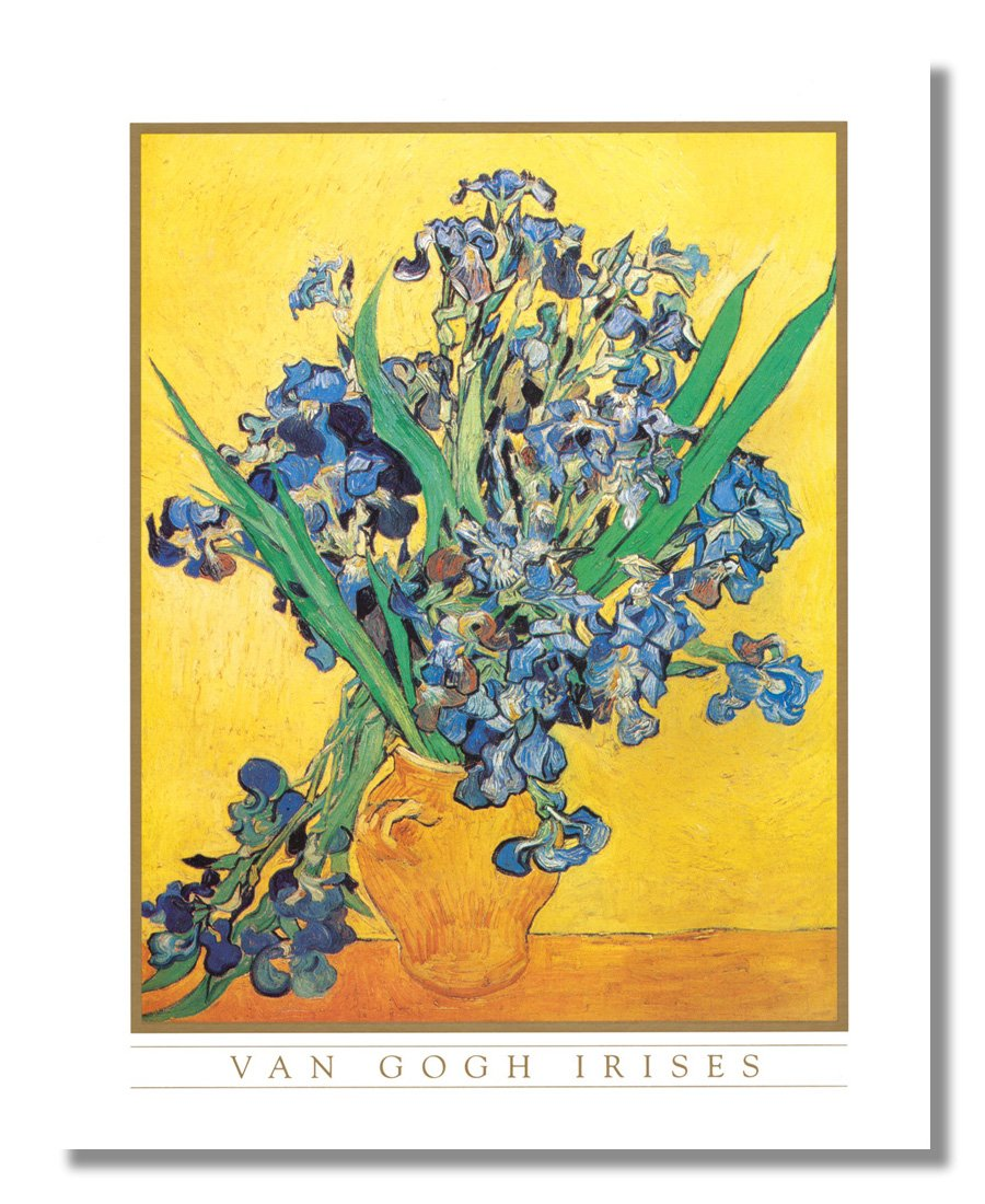 Amazon.com: Vincent Van Gogh Irises Vase Flower Wall Picture Framed ...