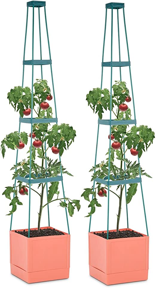 Waldbeck Tomato Tower Set 2 Macetas para tomate con tutor ...