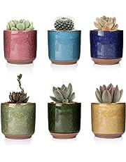T4U 6,6cm Gufi Pianta Grassa Vasi in Ceramica Set di 6 per Piante in Miniatura