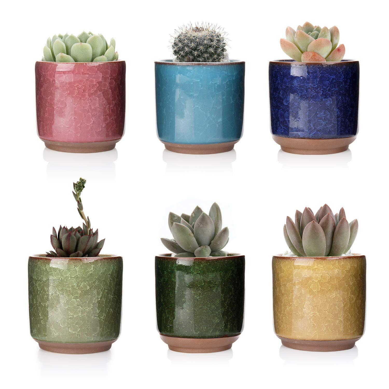 T4U 2.5 Inch Ceramic Ice Crack Zisha Raised Serial Succulent Plant Pot Cactus Plant Pot Flower Pot Container Planter Full Colors Pack of 6