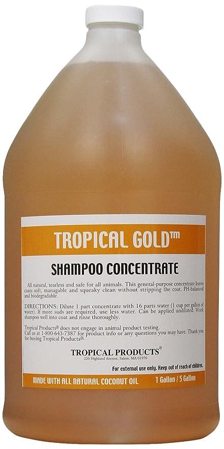 Tropical Oro Perro y Gato champú, para hormigón: Amazon.es ...