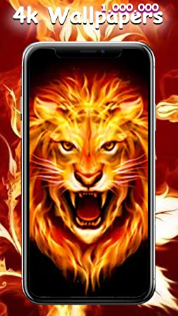 Amazon Com 2018 Amazing Fire Wallpapers And Backgrounds Wallpaper For Kindle Fire Appstore For Android