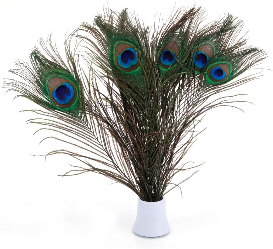 20pcs Peacock Feathers For Crafts Length 25-30CM 10-12inch